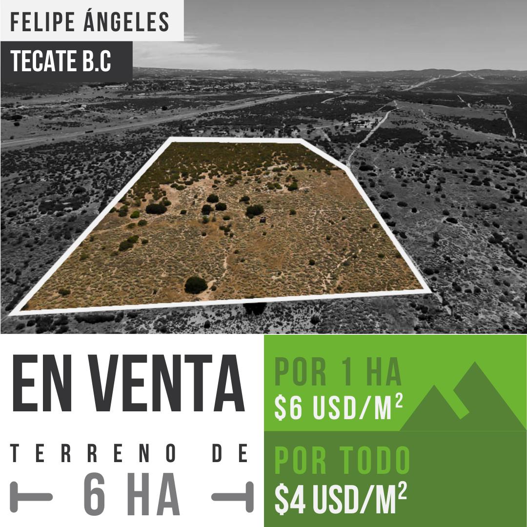 Terreno grande de 6 ha en poblado Felipe Ángeles, Tecate B.C0