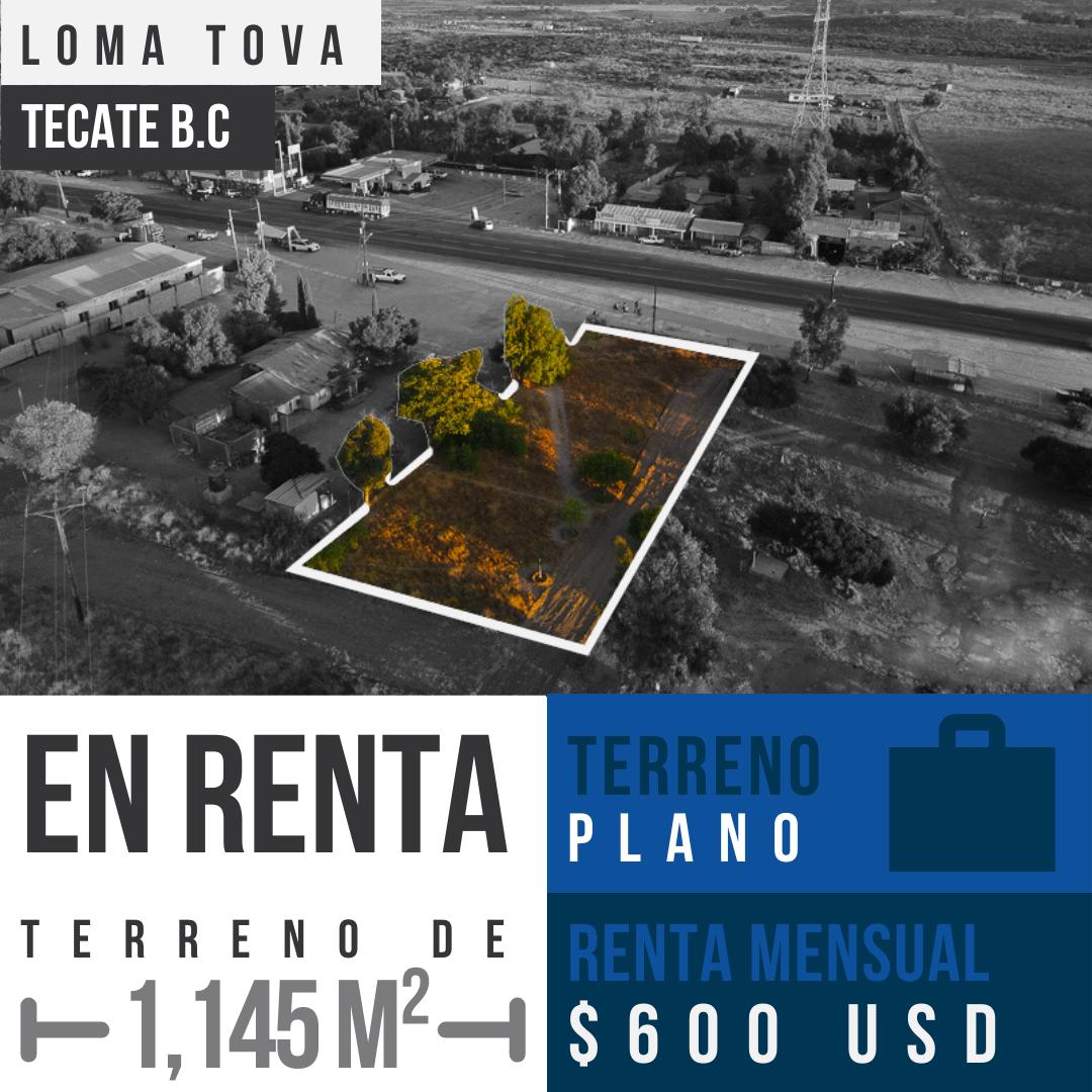 Renta terreno comercial de 1,145m² en Loma Tova, Tecate B.C0
